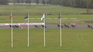 Vidéo de la course PMU PRIX PRO SKARABORGS LOPP