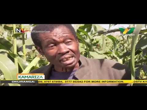 Download OMWANA KAMARIZA Episode....