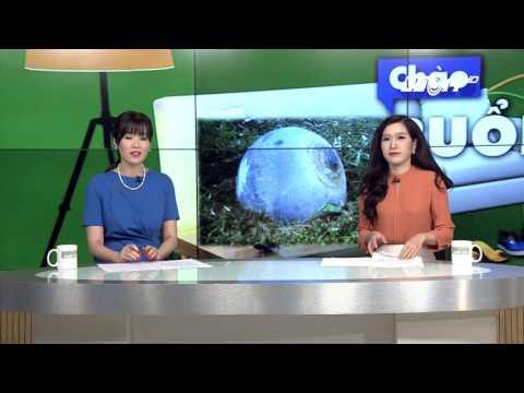 (VTC14)_Vật thể lạ rơi xuống Tuyên Quang và Yên Bái