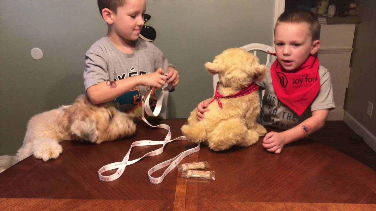 Magic Box: Hasbro's Joy For All Companion Pet Dog