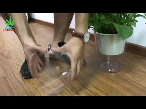 Chậu 2 lớp trồng Hoa Cây cảnh để bàn W09, Bể 2 đáy chứa nước nuôi cá, Cốc trồng cây tự hút nước