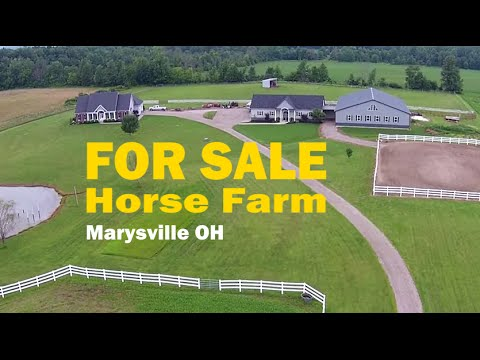 Horse Farm for Sale in Marysville, Ohio | Susanne Novak RE/MAX 24/7