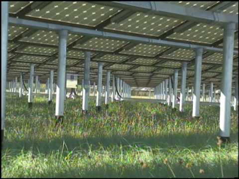 Solar Farms at Kennedy Space Center
