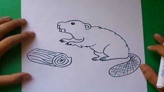 Como dibujar un castor paso a paso | How to draw a beaver