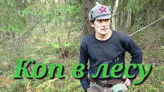 Коп в лесу. Александрреставратор.№141