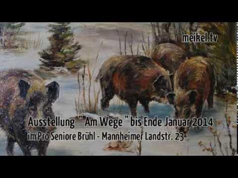 Ausstellung Von Heinz Classen Im Pro Seniore
