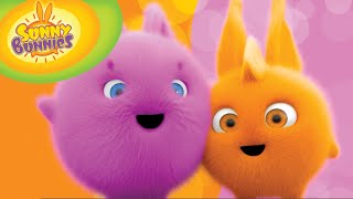 Cartoon | Sunny Bunnies | 30min Compilation 101-109 | Videos For Kids screenshot 2