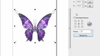 CorelDRAW X5 для начинающих. Изменение размеров (8.3)