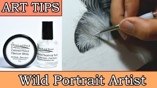 Art Tips: Easy White Highlights for Coloured Pencil Art