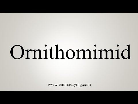 How To Pronounce Ornithomimid