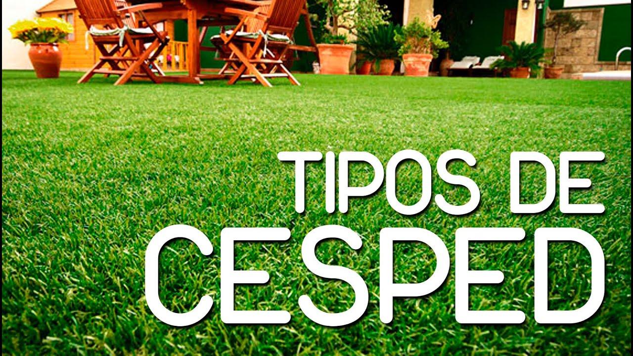 Aprende como cultivar cesped youtube for Tipos de cesped natural para jardin
