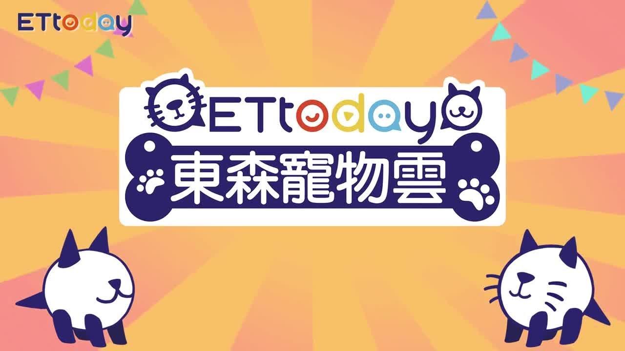 ETtoday東森寵物雲11月正式開幕囉~ - YouTube