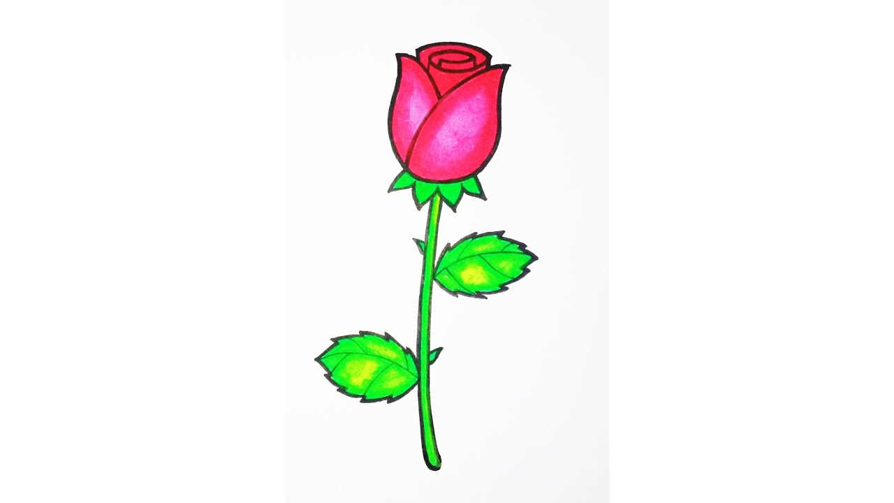 Keren Bagus Tutorial Menggambar Dan Mewarnai Bunga Mawar Rose Mudah Cara Hebat Di 2020 Rabab Minangkabau