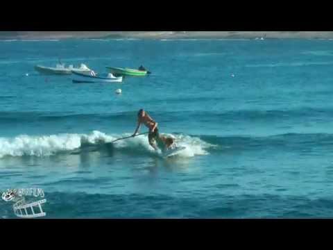 SURFING DOG - El Medano Tenerife