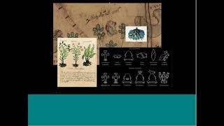Mapa Quetzalecatzin (webinar)