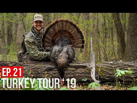 MISSOURI PUBLIC LAND TURKEY! - Windy Day Gobblers
