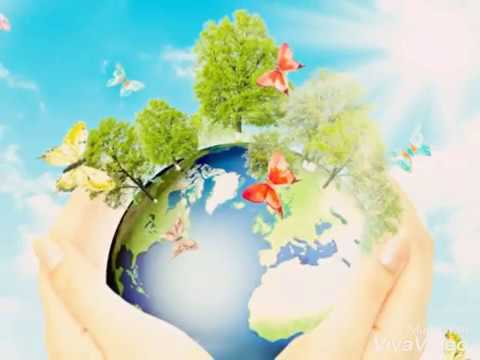 Hijaukan Bumi Kita Youtube