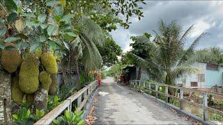T410❤️🌸 Bán nhà Lộ nhựa - có 100m2 thổ cư - gần sông giá 800tr ở Xã Long Định, CT, Tiền giang