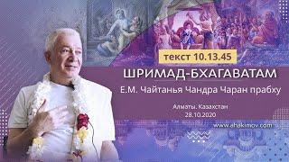 Утренняя программа 28.10.20
