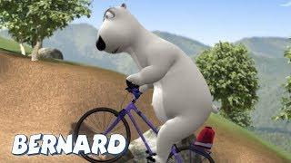 Download Bernard Bear | Mountain Biking AND MORE | Cartoons for Children