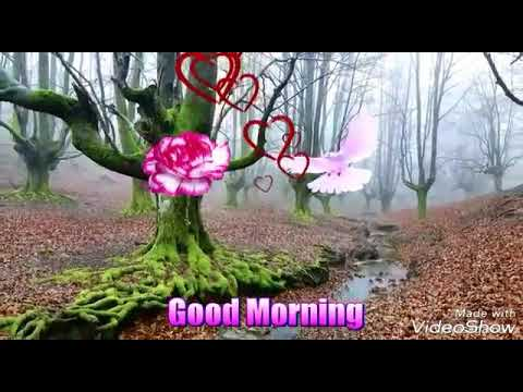 Good Morning Video Songs In Tamil Youtube