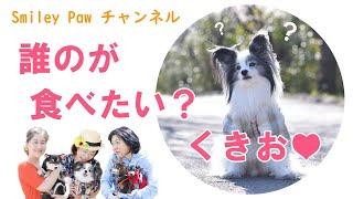 4月10日は SmileyPaw代表である みほちゃんちの愛犬「くきお」くんの誕生日♪ ということで 本日はみんなで ワンコのバースディケーキ作り♡ で、そこはSmileyPaw。