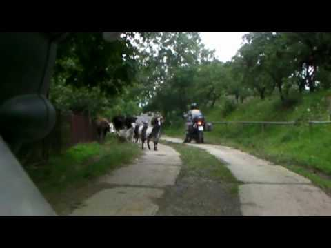 Part 1/4 - Ukraine - The Carpathian mountains - Motorbike Travel