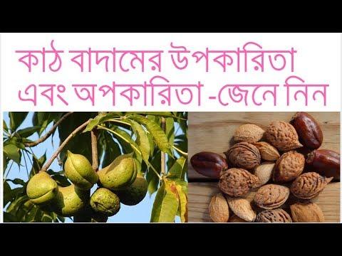 কাঠ বাদামের উপকারিতা এবং অপকারিতা   Health Benefits of Wood Nut