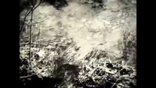 Круговорот воды в природе.1988г. 05 мин. Школфильм.