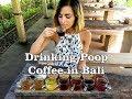 Drinking Poop Coffee AKA luwak coffee bali ubud