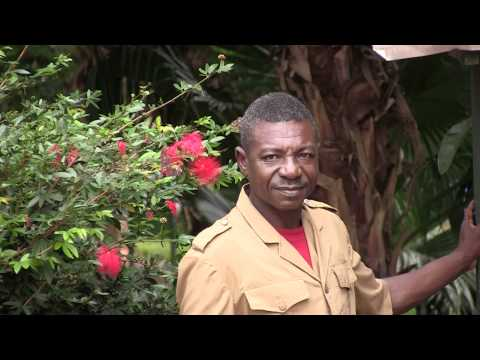 NDOUMBE PRISO, FORESTRY and WILDLIFE OFFICER, ZOO,YAOUNDE, CAMEROON