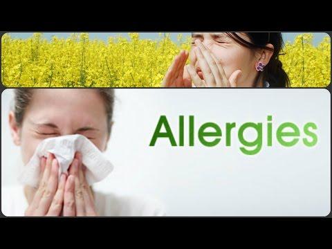 אלרגיות במערכת הנשימה