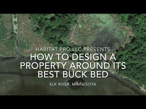 How To Design A Property Around Its Best Buck Bed