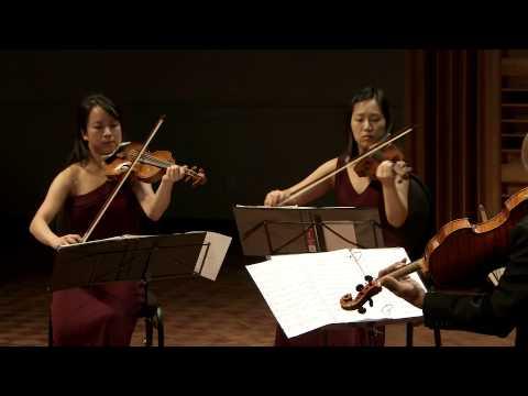 Schubert's String Quintet in C Major, performed by The Afiara Quartet with Joel Krosnick.