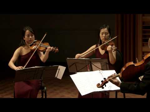 Schubert's String Quintet in C Major, performed by The Afiara Quartet with Joel Krosnick.