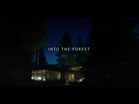 Play It Right - Sylvan Esso - Into The Forest Soundtrack