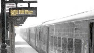 Forest Hills LIRR Station during 2016 Blizzard