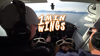 Finish Your Steps in Flying Airplanes -- 1 Minute Wings