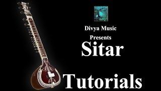 Online Sitar Lessons for beginners Learn playing Sitar on Skype videos Indian Sitar Guru teachers