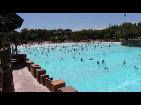 Disney World's Typhoon Lagoon Wave Pool