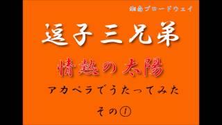 逗子三兄弟 ONEMAN LIVE TOUR 「湘南ブロードウェイ~三匹の子ブタ 紅白...