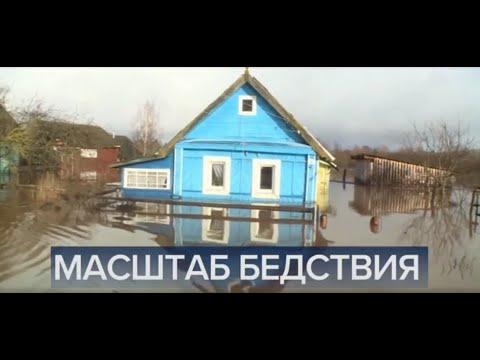 Первый Канал Новости в 12:00 от 07.11.2019 / Срочные Новости