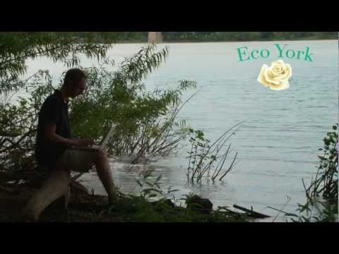 Web Development Company - York PA | Eco York, LLC Commercial