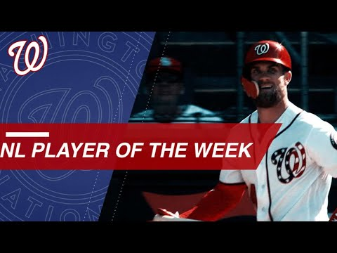 Bryce Harper is named NL Player of the Week