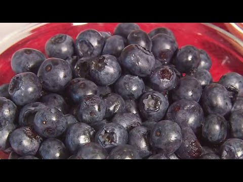 Frankie Darcell - Guess What We Just Found Out About Blueberries?