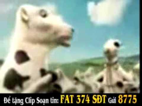 Quảng cáo sữa tươi Vinamilk
