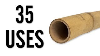 35 Amazing Uses for Bamboo