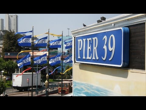 PIER 39, Japanese Tea Garden e LOMBARD STREET - San Francisco - Estados Unidos