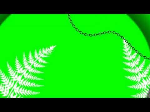 Футаж для интро на зелёном фоне Ч.О
