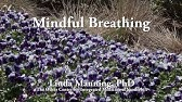 Short Mindful Breathing Exercise